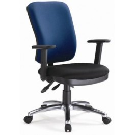 Ergonomic High Back Task