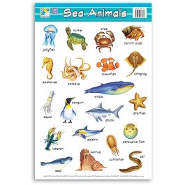 Wall Chart - Sea Animals